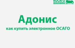 Адонис ОСАГО онлайн купить